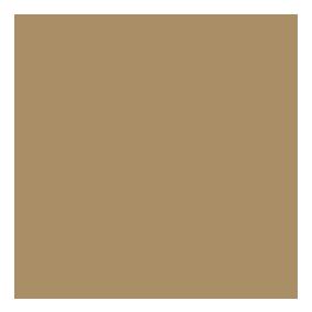 Logo Rapporto