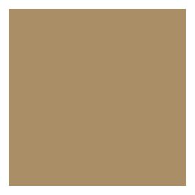 Logo Restistenza Luce
