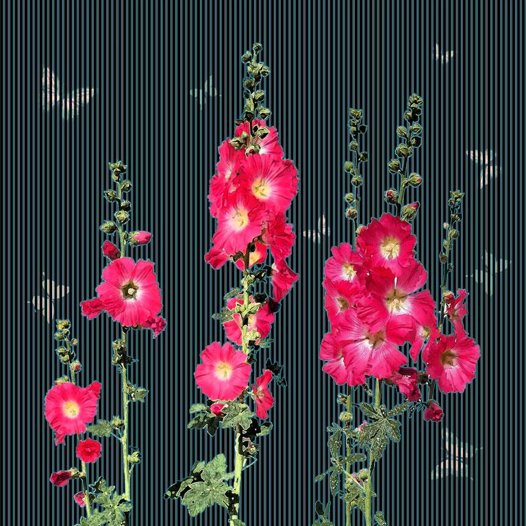 Vertical-Flowers-texture
